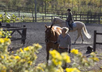 Hevosia ja ratsastusta nurmijärvellä