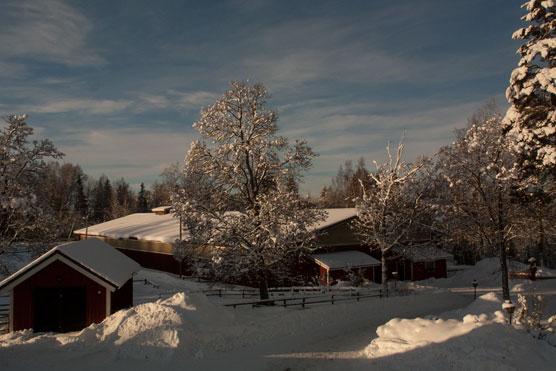 Talvinen näkymä maneesille