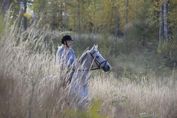 Ratsukko maastossa