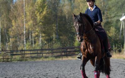 Ratsastajan selkärangan liikkeen ja syvien tukilihasten hallinta